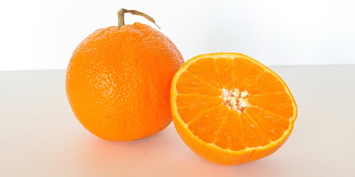 """Checking Understanding: """"Oranges"""" by GarySoto"""