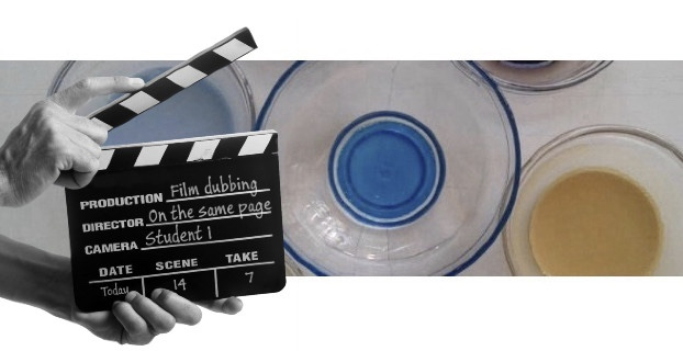 Film Dubbing: a Flexible Integrated Skills Task